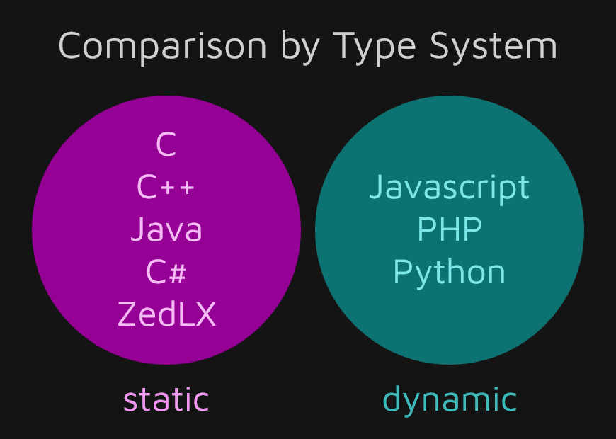Comparison of Popular Programming Languages by Type System